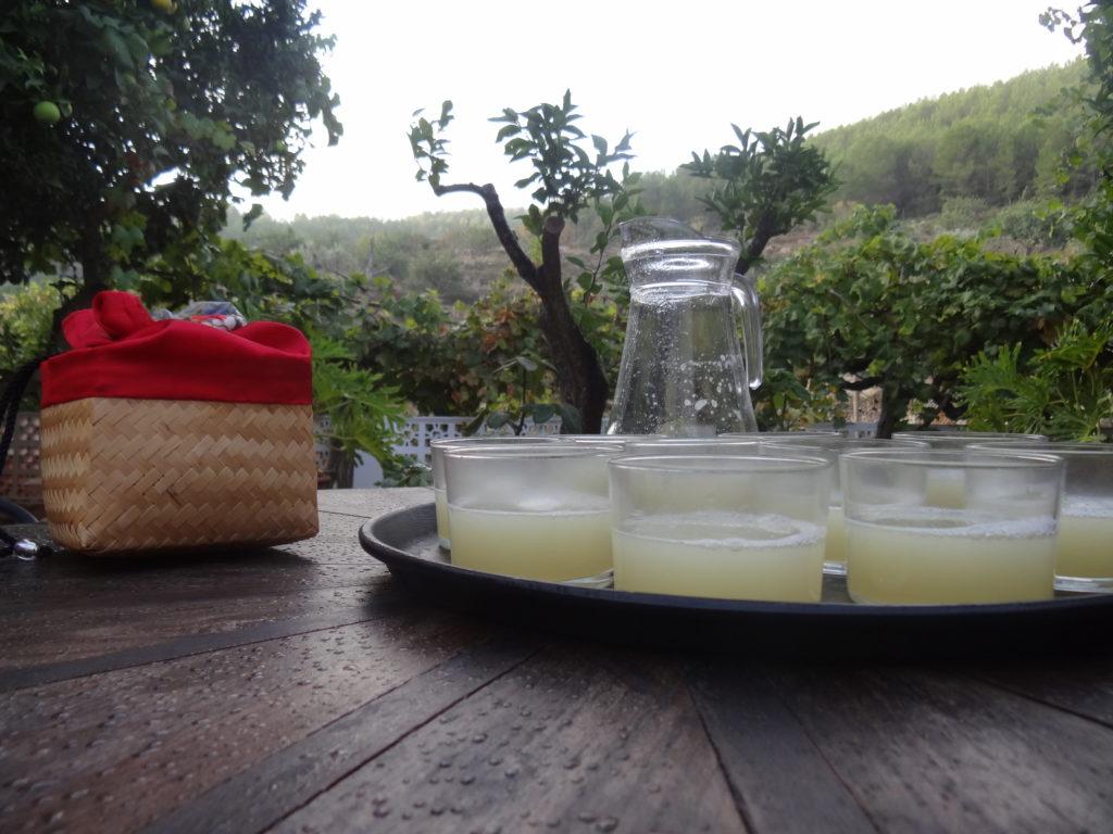Boire un jus de citron le matin
